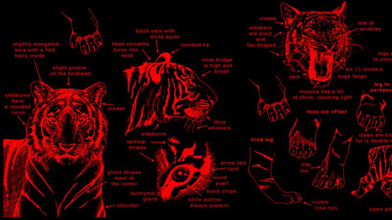 O Tigre no Horroróscopo — MACABRA.TV