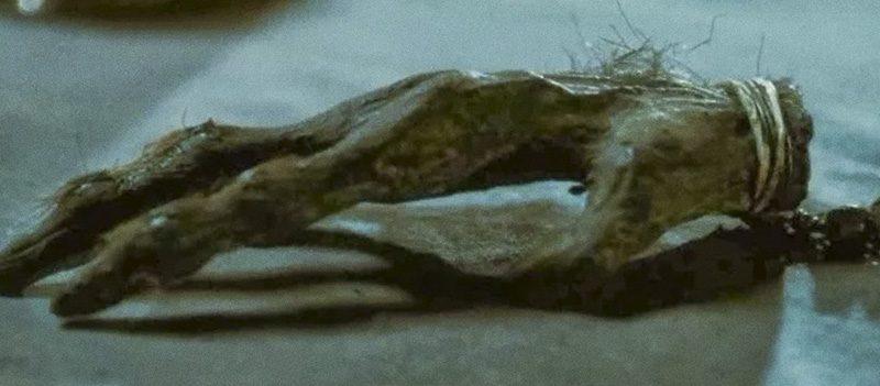 Pata do Macaco, objeto amaldiçoado dos filmes de terror